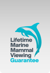 Lifetime Marine Mammal Viewing Guarantee