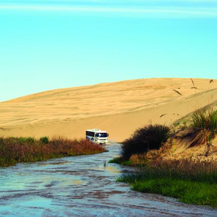 Dune Rider driving through Te Paki stream